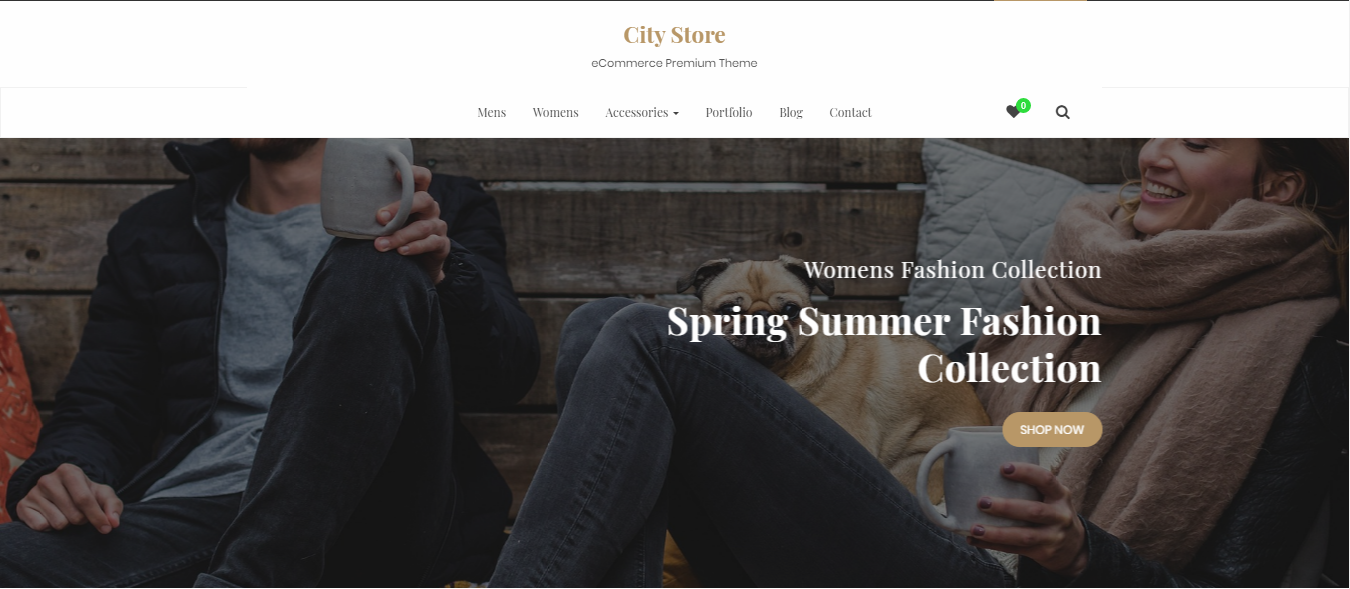 City Store Pro, Best WordPress themes and plugins for 2018, WordPress themes for 2018, WordPress themes,Best WordPress Themes