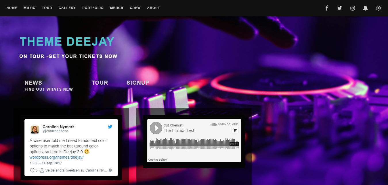 DeeJay, Free WordPress themes for musicians